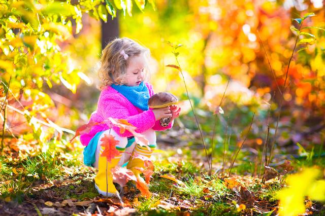 Little girl picking mushrooms